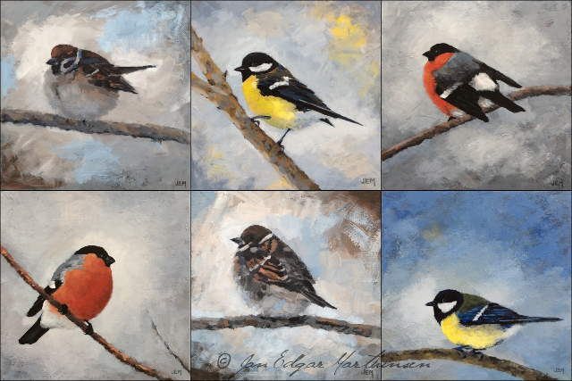 New bird paintings