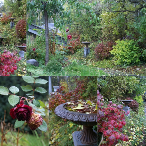 Oktober farger